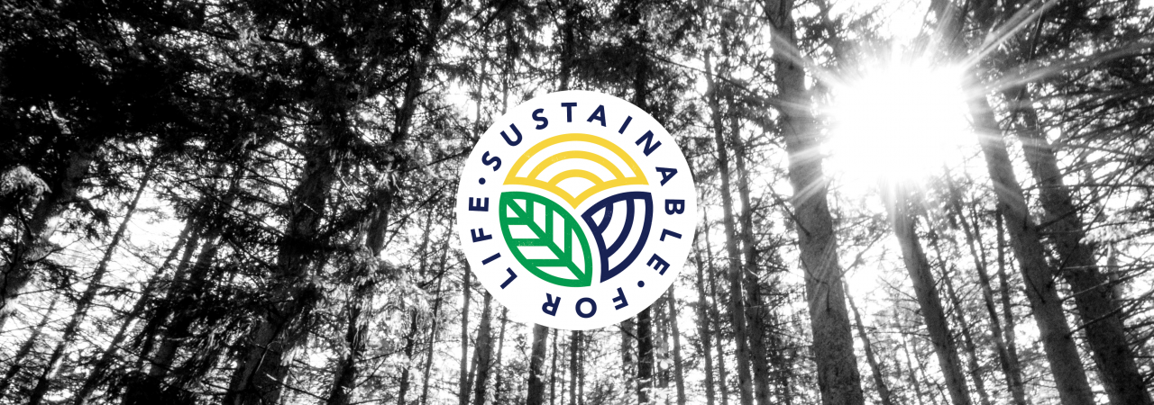 Sustainable for life 4